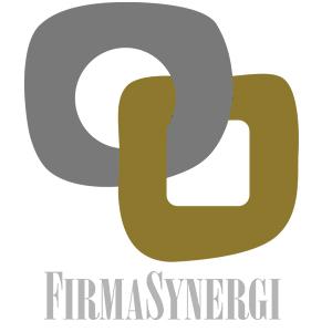 firmasynergi